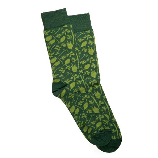 Schönwetterfront Grüne Soße Socken