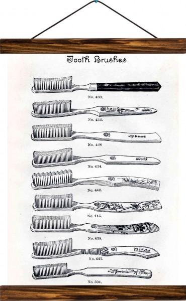 Vintage Lehrtafel  - Tooth brushes - White