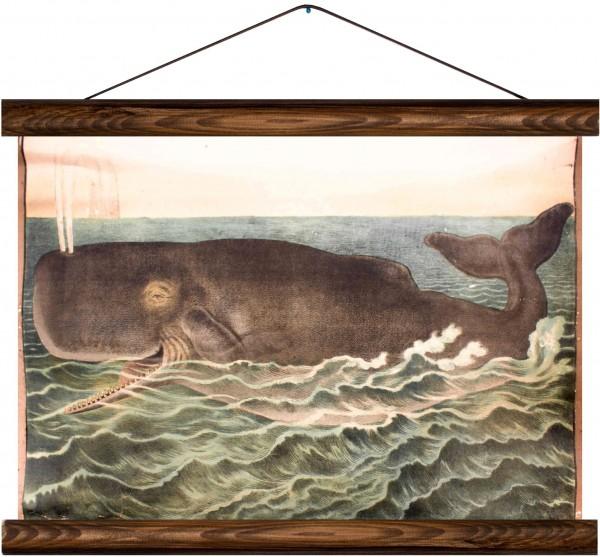 Vintage Lehrtafel  - Whale and Waves